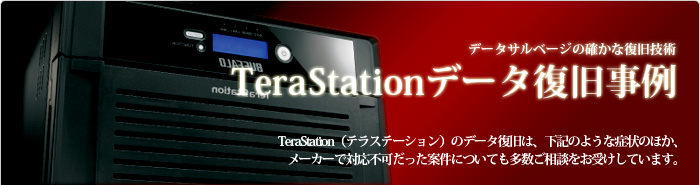 TeraStationデータ復旧事例